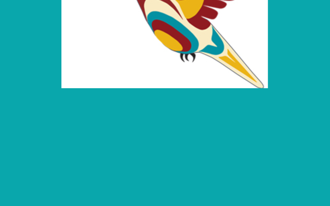 FMB Webinar: Plan Your First Nations' Financial Future (Nov 2020)